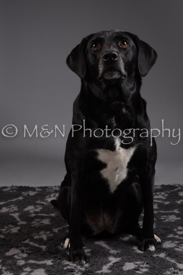 M&N Photography -DSC_2034
