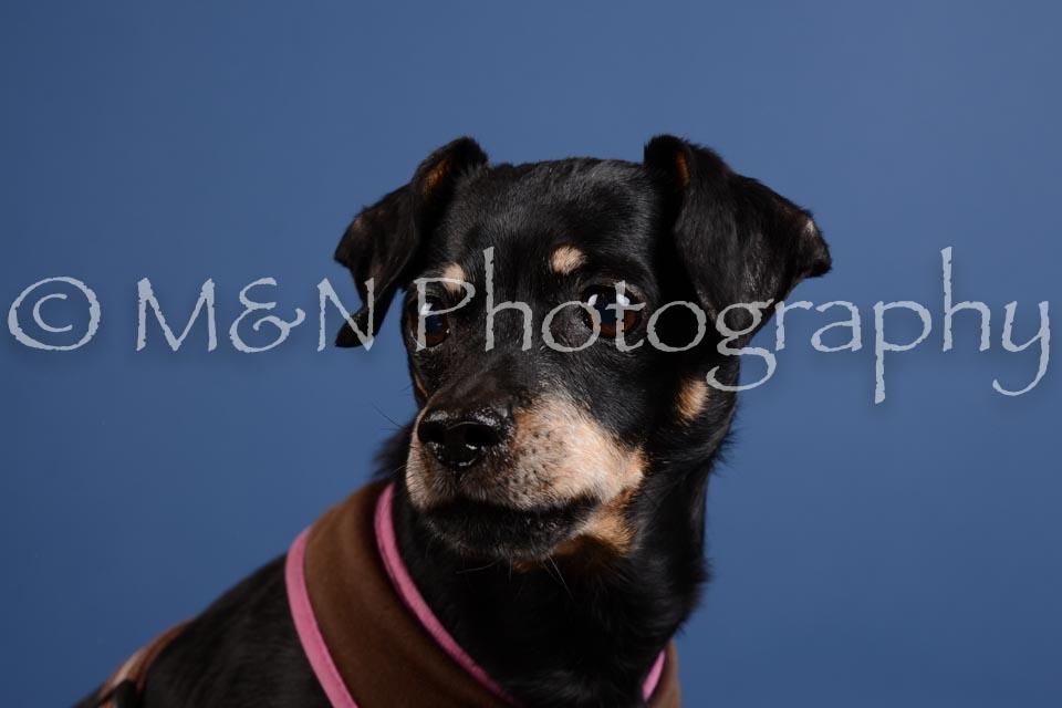 M&N Photography -DSC_5236
