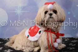 M&N Photography -DSC_7150