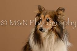 M&N Photography -_SNB0713