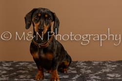 M&N Photography -_SNB0534