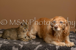 M&N Photography -_SNB0828
