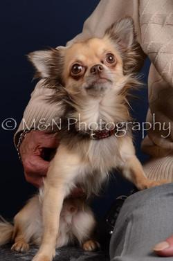 M&N Photography -DSC_4306