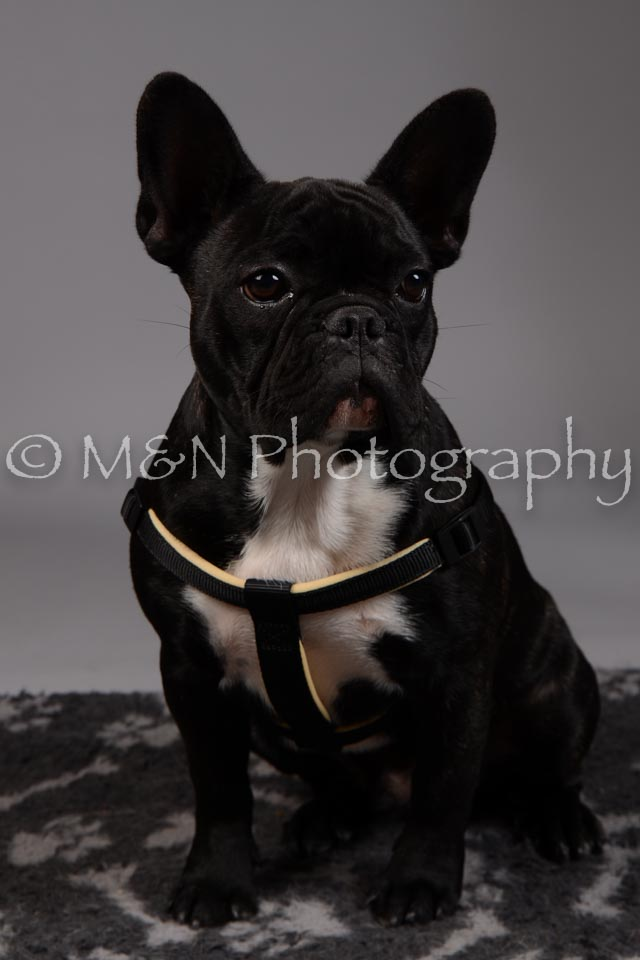 M&N Photography -DSC_1731