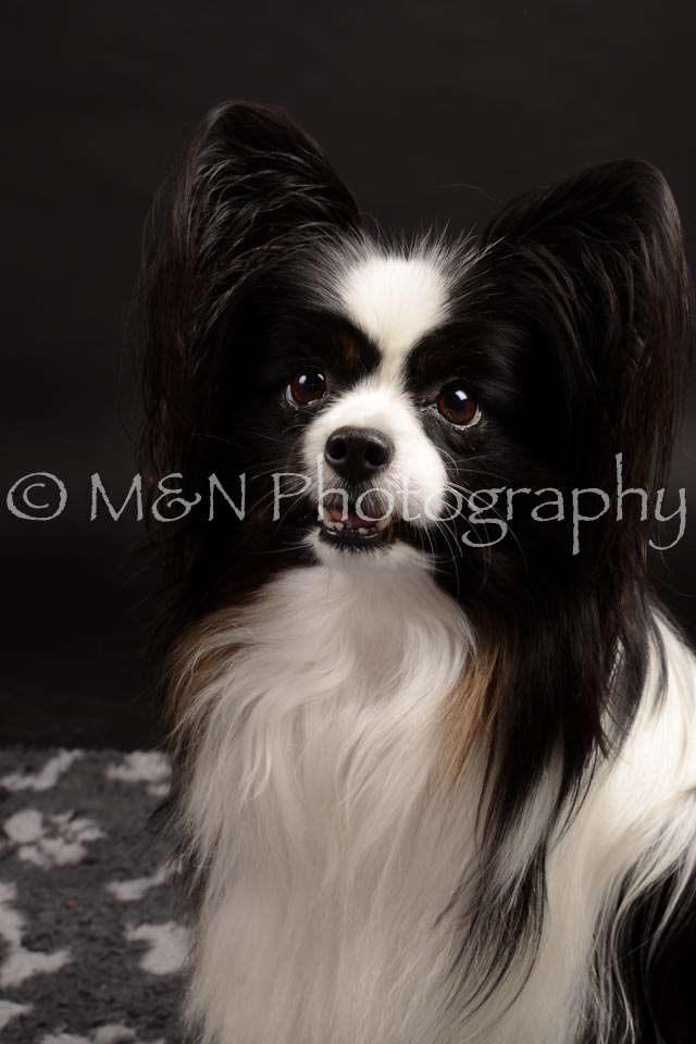 M&N Photography -DSC_9815