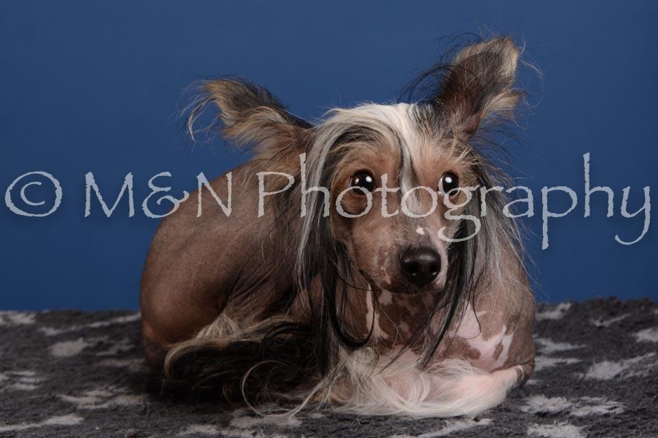 M&N Photography -DSC_5179