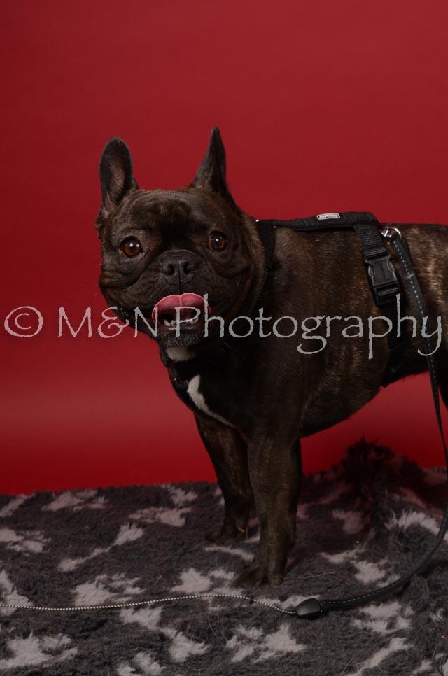 M&N Photography -DSC_6767