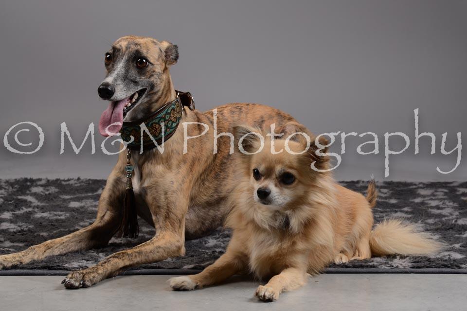 M&N Photography -DSC_1777