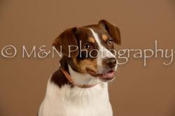 M&N Photography -_SNB0838