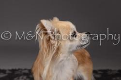 M&N Photography -DSC_2221
