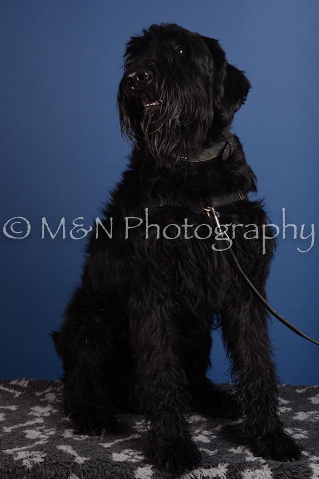 M&N Photography -DSC_4974
