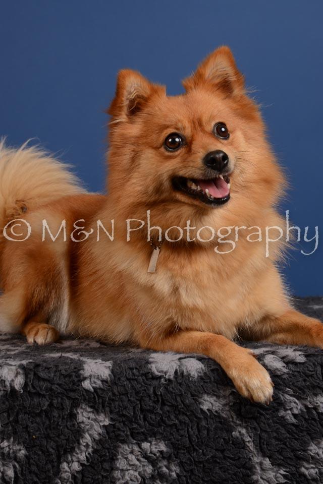 M&N Photography -DSC_5377-2