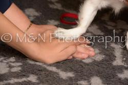 M&N Photography -_SNB0743