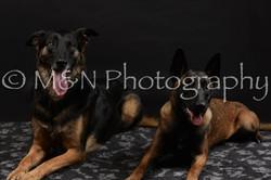 M&N Photography -DSC_2733