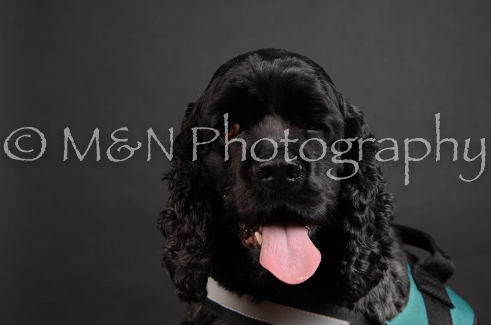 M&N Photography -DSC_5398