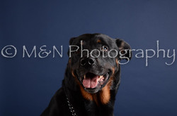 M&N Photography -DSC_3994