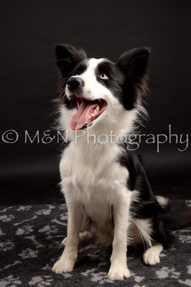 M&N Photography -DSC_0150