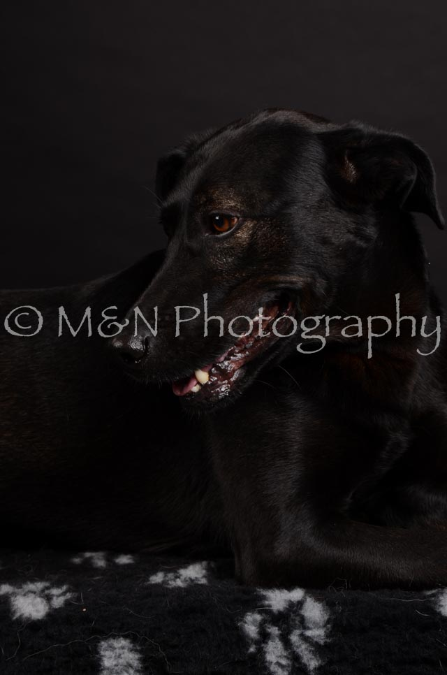 M&N Photography -DSC_5785