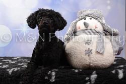 M&N Photography -DSC_6879
