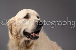 M&N Photography -DSC_1669