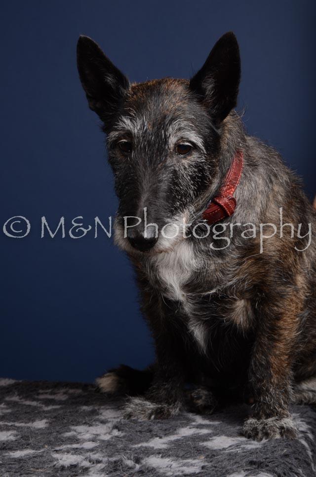M&N Photography -DSC_3891