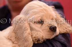 M&N Photography -DSC_3615