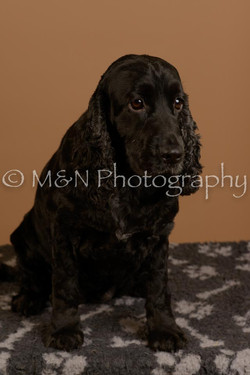 M&N Photography -_SNB0574