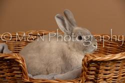 M&N Photography -_SNB0507