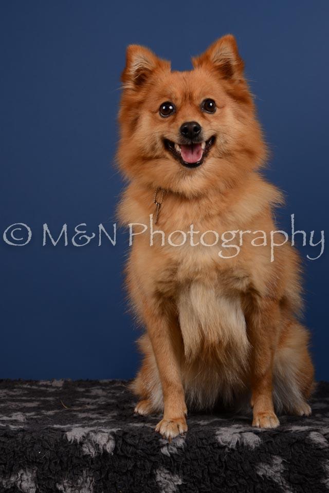 M&N Photography -DSC_5379