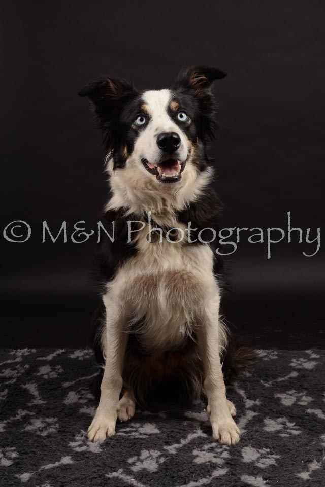 M&N Photography -DSC_9945