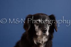 M&N Photography -DSC_4889