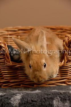 M&N Photography -_SNB0957
