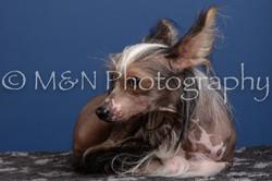 M&N Photography -DSC_5178