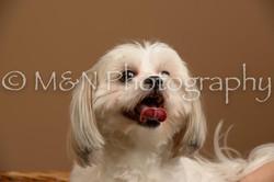 M&N Photography -_SNB0770