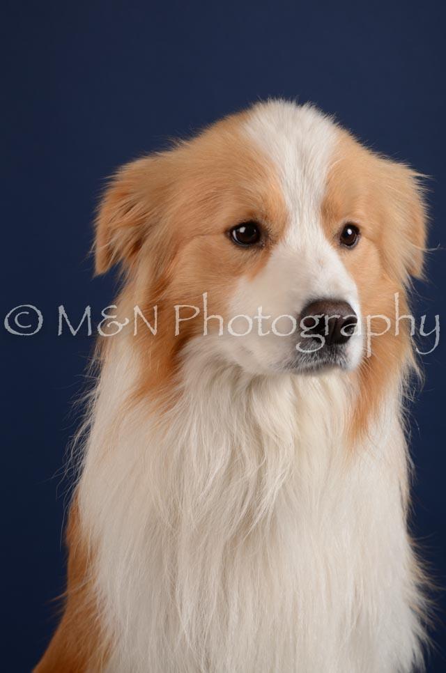 M&N Photography -DSC_3941