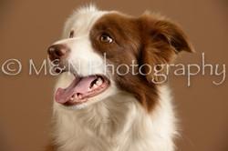 M&N Photography -_SNB0632