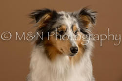 M&N Photography -_SNB0972