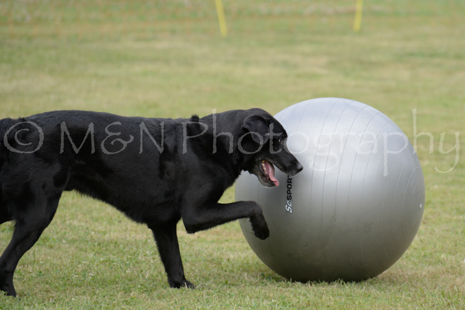 M&N Photography -4655