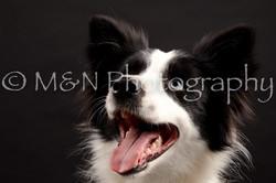 M&N Photography -DSC_0148