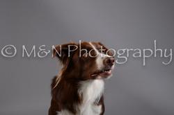M&N Photography -DSC_1452