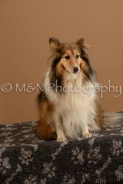 M&N Photography -_SNB0714