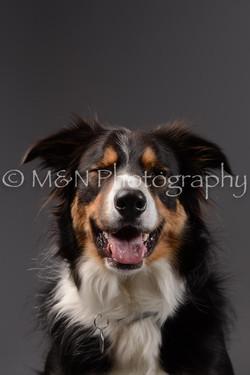 M&N Photography -DSC_2059