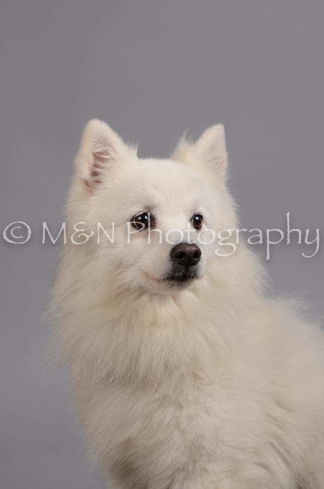 M&N Photography -DSC_2767