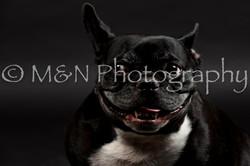 M&N Photography -DSC_2412