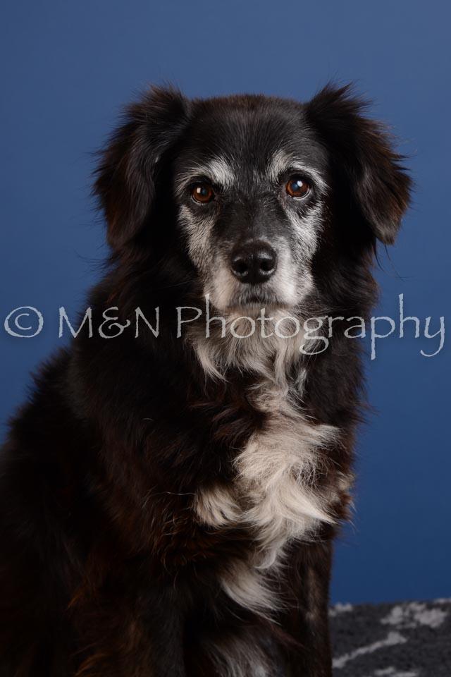 M&N Photography -DSC_4893