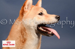 M&N Photography -DSC_4326-2