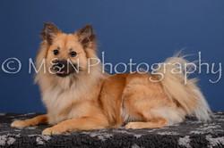 M&N Photography -DSC_5024