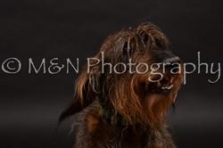 M&N Photography -DSC_9997