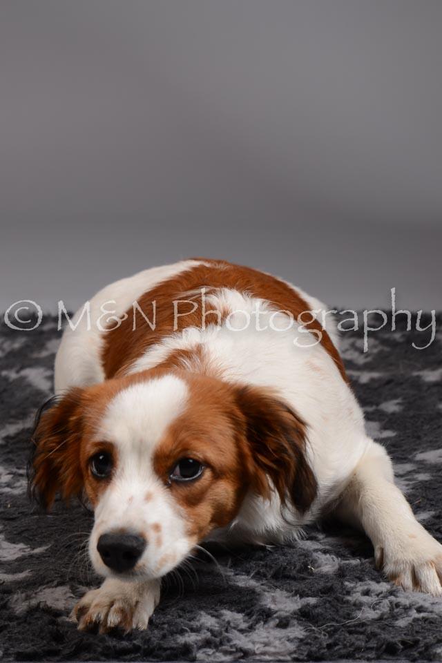 M&N Photography -DSC_1505
