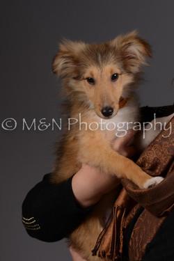 M&N Photography -DSC_2289